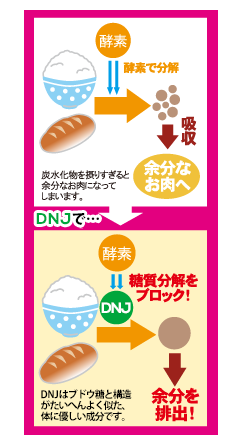 DNMの解説